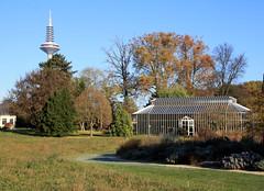 10-IMG_7071 (hemingwayfoto) Tags: frankfurt herbst herbstfärbung palmengarten