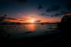 Home (P Squared Pics) Tags: explorebc steveston bc sunset winter tidal warf ocean dock pier psquaredpics sun clouds sky richmond yvr canon 5d tokina wideangle 1735