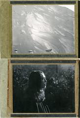 S. (denzzz) Tags: portrait polaroid diptych analogphotography instantfilm filmphotography polaroid55 polaroid54 blackwhite blackandwhite wista45dx 4x5 largeformat fujinona 240mm skancheli expired