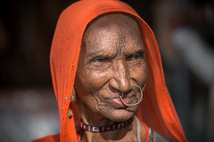 Inde: Rajasthan, portrait. (claude gourlay) Tags: inde india asie asia indedunord northindia claudegourlay retrato portrait ritratti rajasthan face people ambedkar