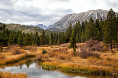 peaceful playground (Maureen Bond) Tags: easternsierra ca maureenbond autumn fall beforethesnow afterthesummer fishermen goodbye peaceful retreat mountains highelevation river creek pines trees water clouds beforethestorm beautiful hiking cantgetenough
