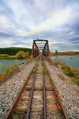 Railroad Bridge Perspective (Brian 104) Tags: railroad bridge perspective overcast fall bird