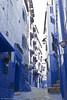 IMG_7456 (Juan Manuel Sanchez) Tags: marruecos fez chaouen chefchaouen trip morooco azul blue blanco curtiduria teneria tinte color ropa madrid adrianospicture rico riqueza nuevo foto bonito africa african puertaazul ryanair volar avion tela callejon medina casas calle casa gato gatos cat nostalgia tristeza alegria animal animales escalera tunel puente pais ciudad pueblo forja fragua farol montaña rezo pray cielo sky blancoynegro retrato cara anciano anciana viejo arbol silueta contraluz mercado bazar tejado chowara