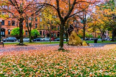 Commonwealth Ave Foliage ((Jessica)) Tags: commonwealth ave boston back bay backbay commonwealthave massachusetts foliage leaves fall autumn brownstones statue newengland