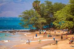 Celebrated Summer (Thomas Hawk) Tags: hawaii maui wailea beach palmtree tree fav10