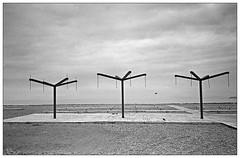 Untitled (Christos Theofilogiannakos) Tags: ricohff9 kodaktrix rodinal stand 35mm film bw