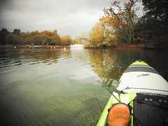 Autumn feast (Nicolas Valentin) Tags: scotland scenery loch landscape lochlomond light lomond lake kayakfishing kayak kayakscotland kayaking kayakfishingscotland