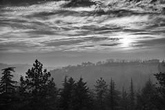 San Luca (Max TheMoon) Tags: bologna emiliaromagna italia it facendo colazione santuario della madonna di san luca sanluca santuariodellamadonnadisanluca blackandwhite goodmorning silver cloud sky italy