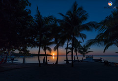 Florida Life: Mile Marker 68 (Thncher Photography) Tags: sony a7r2 sonya7r2 ilce7rm2 zeissfe1635mmf4zaoss fx fullframe scenic landscape waterscape oceanscape nature outdoors sky clouds colors sunset shadows silhouettes tropical island palmtrees beach mm68 milemarker68 floridakeys overseashighway southflorida