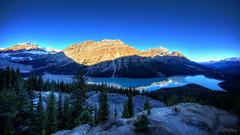 Peyto Lake (RH Miller) Tags: rhmiller reedmiller landscape water mountains peytolake icefieldsparkway canada