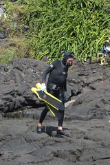 ol' Bill (BarryFackler) Tags: people honaunaubeachpark lavarock shore seaside beachpark beach coast freediver fins wetsuit mask man tidepool snorkel weightbelt kane diver diving dive wet rocks sport competitor honaunau honaunaubay southkona hawaii bigisland tropical outdoor hawaiiisland island 2016 sandwichislands hawaiicounty kona westhawaii hood barryfackler barronfackler bay oldman konadiving bigislanddiving hawaiidiving hawaiianislands polynesia konacoast seashore