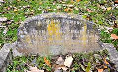Titanic Victim (R~P~M) Tags: grave tomb memorial graveyard churchyard cemetery fawley england uk unitedkingdom greatbritain titanic whitestar marine maritime bucks buckinghamshire