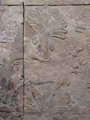 Bull (Aidan McRae Thomson) Tags: britishmuseum london relief sculpture assyrian mesopotamia nineveh