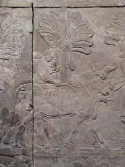 Bull (Aidan McRae Thomson) Tags: britishmuseum london relief sculpture assyrian mesopotamia nineveh