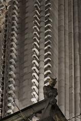 Paris_Notre Dame_22112016-011 (Cline Gres) Tags: notredamedeparis paris gargouille