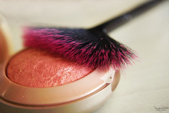 Brush for Blush (F.emme) Tags: 7daysofshooting week21 instruments 7dos macromonday makeup cosmetics brush blush