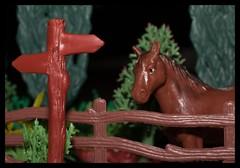 254 Arrow (Helena Johansson 71) Tags: macromondays arrow horse macro nikond5500 d5500 nikon project365 toys
