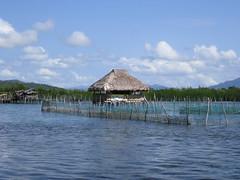 WATERHOUSE (PINOY PHOTOGRAPHER) Tags: matnog sorsogon bicol bicolandia nipa hut luzon philippines asia world