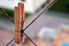 (Luiza Brasolim) Tags: line clip clothes clothesline varal grampo grampoderoupa clothingclip