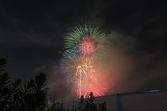 2015_08_08 淀川花火-18 (Y.K.swimmer) Tags: japan night fireworks osaka 花火 淀川 花火大会 なにわ