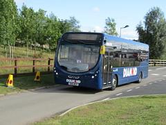 SM15 WCP (markkirk85) Tags: new bus buses festival diamond wright wcp gaydon 30165 streetlite sm15 62015 sm15wcp