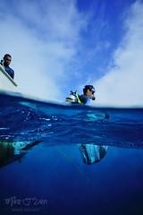 50/50 Giant step (Mike.J.S) Tags: fiji bad scuba scubadiving diver beqa