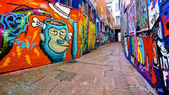 Graffiti (stavos) Tags: street art colors canon graffiti monkey alley belgium colorfull tags ghent gent streetview uwa 10mm 550d stavosnl
