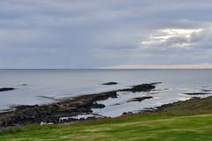 VESTFIRÐIR - Skálanes (Andrea Zille) Tags: iceland islanda republicoficeland lýðveldiðísland islandazilleandrea