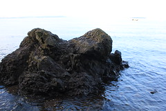 Norway 21 (Detlef Klein) Tags: beach oslo moss gods fjord refsnes
