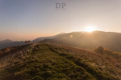 Quiet Warm Rays (Daniele Pauletto) Tags: sunset sun nature landscape warm italia tramonto natura hills flare rays quite sunrays colline sormano dpphotography lacolma