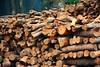 Firewood (a_ali1993) Tags: trees winter cold be firewood crosssection حطب اشجار خشب برد شجر