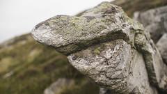 Rock with big nose