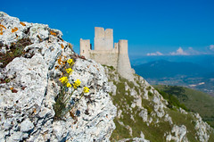 Rocca Calascio (DarioMarulli) Tags: rovine 1855mm fiore fiori laquila abruzzo roccacalascio calascio ladyhawke fortezza parconazionaledelgransasso borghi nikonclubit nikon d3200 nationalgeographic