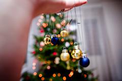 Let's Xmas (Teppo Kotirinta) Tags: christmas xmas koti joulu joulukuusi