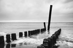 Breakers (Simon Hillmann) Tags: sea bw white black holland seaside meer zeeland groyne groynes wellen groins pfhle wellenbrecher breskens pfahlreihen