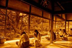 Kyoto Ohara, zen garden (enrico lorenzo conti) Tags: kyoto garden zen japan japanese nikon d750 samurai tree meditation ohara kansai inspiring