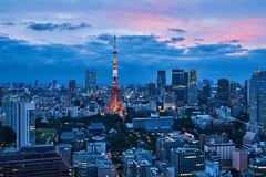 Blue Tokyo (yiming1218) Tags:   tokyo tower seaside world trade center observatory the  magic hour evening glow cityscape city landscape japan     blue nightscape sony fe 2470mm gm f28 gmaster sel2470gm ilce7rm2 a7r2 a7rm2 a7rii architecture building    hamamatsucho