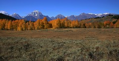 The Lord's Majesty (The VIKINGS are Coming!) Tags: god autumn colors foliage wyoming tetons