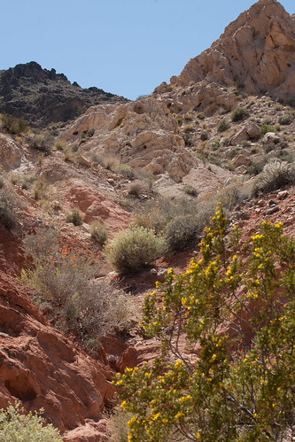 Las Vegas 2013 - Valley of Fire - DSC05219.jpg