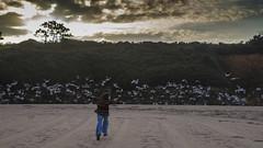 Septiembre en la playa v2 - Te encontr (ponzoosa) Tags: playa 2016 beach sand water ocean arena sea atlantic cantbrico gaviotas seagull sunset correr run