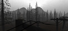 Grey Forest (Tizzy Canucci) Tags: forest secondlife virtualworld wood trunks pine fir telegraph pole telephone wires