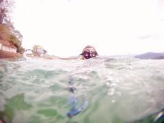GOPR5913 (ambrogi_taubate) Tags: naturezaselvagem marinha mergulhando ubatuba sp brasil naturezamarinha fantstica apneia 10m setembro primavera 2016