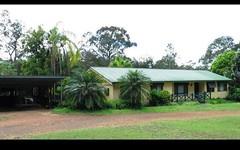 453 Tinonee Road, Mondrook NSW