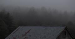 Mist. 11.25.16 (koperajoe) Tags: mist trees newengland forest barn westernmassachusetts desaturated tinroof