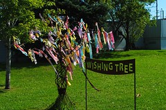 Make a Wish (Cragin Spring) Tags: tree downtown superiorwi superior superiorwisconsin wisconsin wi midwest northernwisconsin unitedstates usa unitedstatesofamerica sign wishingtree wish