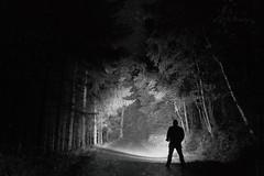 Erleuchtung (SurfacePics) Tags: badessen wittlage eielstdt wiehengebirge altkreiswittlage landkreisosnabrck lkos niedersachsen lowersaxony deutschland germany europa europe nacht nachtaufnahme nachtfoto night nightshot langzeitbelichtung wald forest darkness dunkelheit ledlenser ledlenserx21r torchlight taschenlampe blackwhite blackandwhite schwarzweis sw einfarbig monochrome amazing stunning tumblr instagram surfacepics sonyalpha77ii sonyalpha cam photo photography foto oktober 2016 wiehenhorst eielstdterschlucht