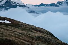 Zermatt 14 (jfobranco) Tags: switzerland suisse valais wallis alps zermatt gornergrat cervin matterhorn