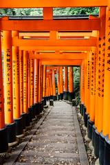 The Gates (Pikaglace) Tags: sony a7 kyoto japan japon fushimi inari shrine temple sanctuaire red rouge torii gate portail religion religious travel asie asia architecture vintage colors
