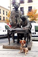 (Jimmy Olsen Junior) Tags: mejoramigo bestfriend spain españa castillayleón salamanca epagneulbreton spanielbreton dog firma estatua mascota perro