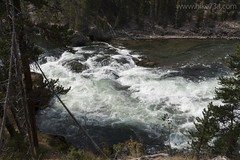 "Rapids in the Yellowstone River • <a style=""font-size:0.8em;"" href=""http://www.flickr.com/photos/63501323@N07/30732390221/"" target=""_blank"">View on Flickr</a>"
